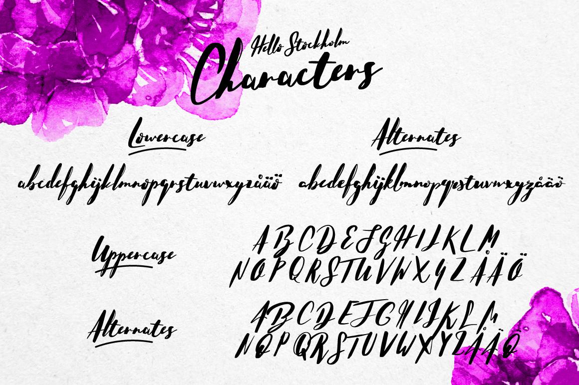 Hello Stockholm - Handmade Typeface - Script - 12