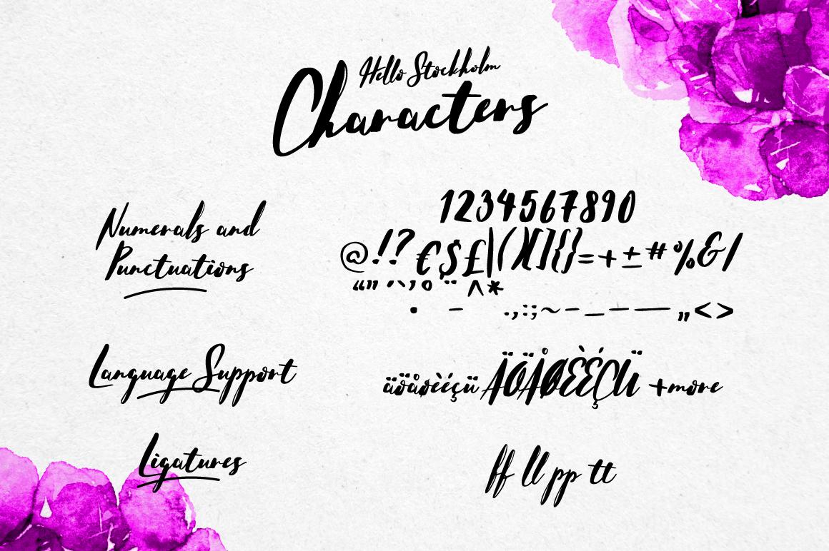 Hello Stockholm - Handmade Typeface - Script - 13