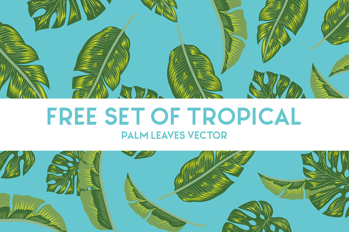 Free Vector Tropical Palm Leaves Free Commercial Use Fonts Graphics Free vector icons in svg, psd, png, eps and icon font. free vector tropical palm leaves