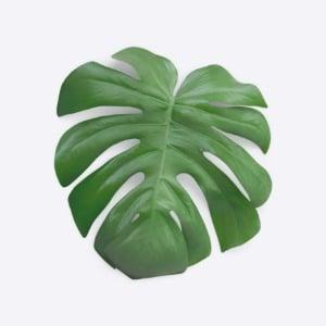 Monstera leaf - realistic mockup elements